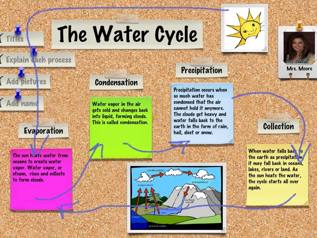 Nunez Water Savers Group 7 - The Cycle Water
